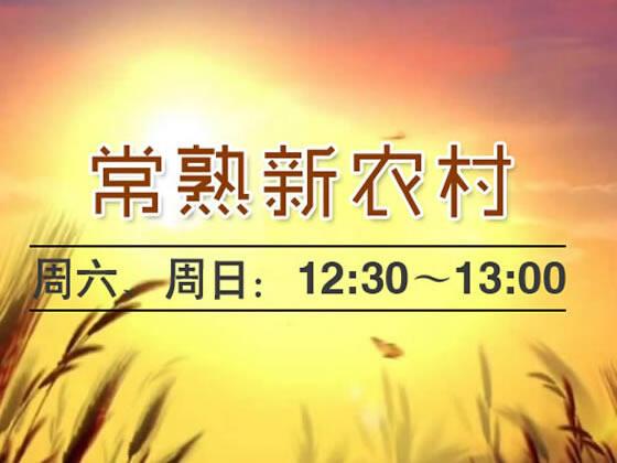 常熟新农村2019-11-03