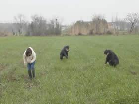 200多种田大户滞留外地,农时不等人,这36000亩庄稼怎么办?