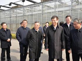 """许昆林调研常熟""""三农""""工作:发展高端农业,在实现共同富裕上加快探索"""